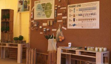 Organizacja ekologicznego pikniku rodzinnego. Klient: Michelin Polska